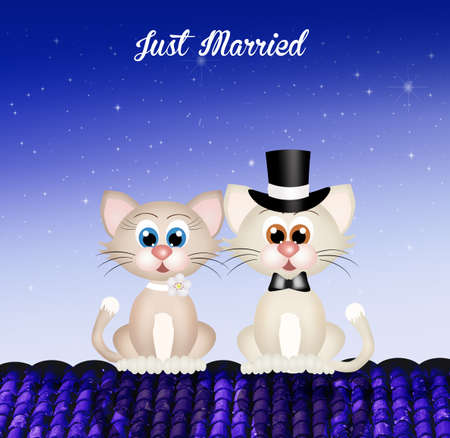 purr: Marriage of cats Stock Photo