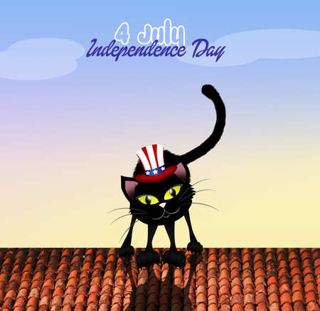 cat on Independence Day photo
