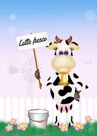 milk pail: fresh milk