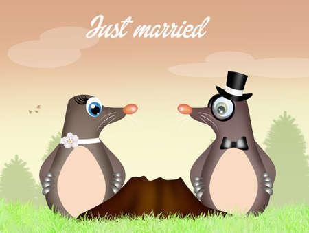 animal den: moles couple