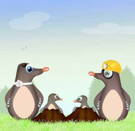 animal den: moles family