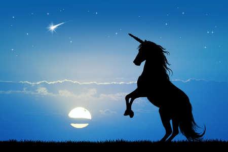 unicorn at sunset Stockfoto