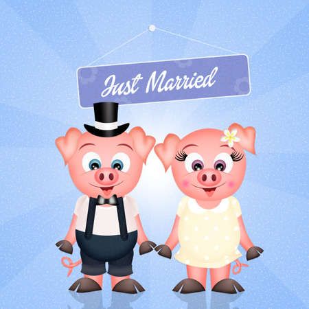 piglets: Pigs marry