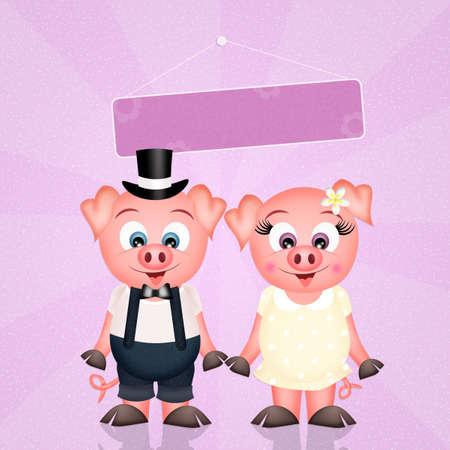 spouses: pigs spouses