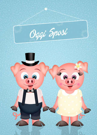 pigsty: Pigs marry