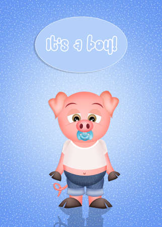 pigsty: born a male