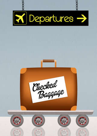 permission: checked baggage