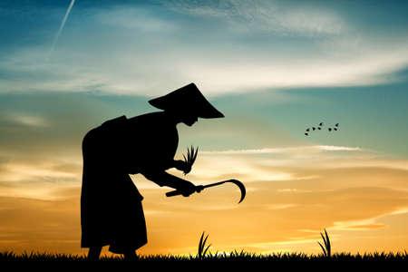 asian farmer: Asian farmer