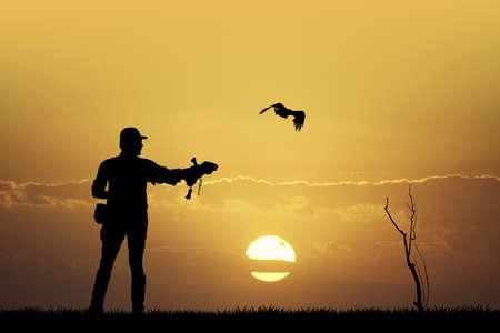 rapacious: falconry