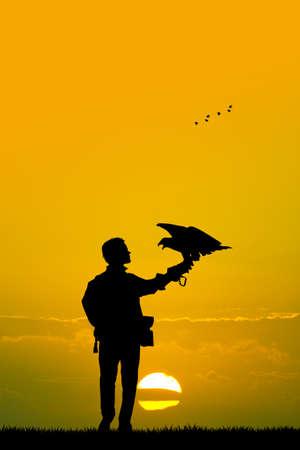 rapacious: falconry at sunset