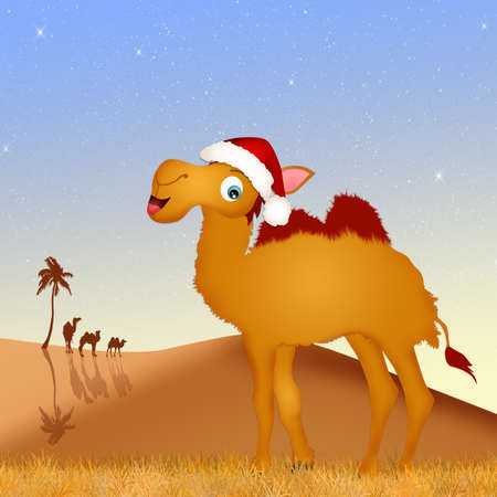 humps: camel with Christmas hat