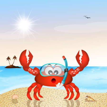 scuba mask: crab with scuba mask Stock Photo
