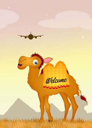 sand dune: welcome in Egypt Stock Photo