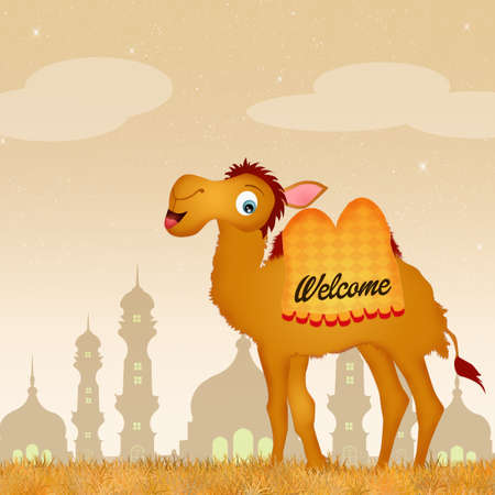 humps: welcome in India
