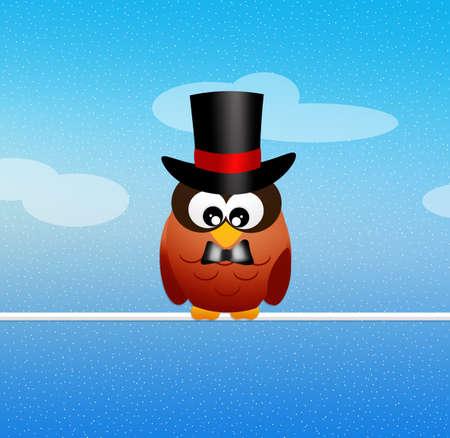cilinder: Magician owl