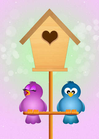 happy couple at home: birds couple