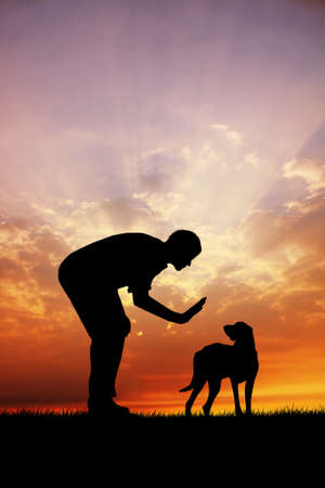 trained: trained dog at sunset