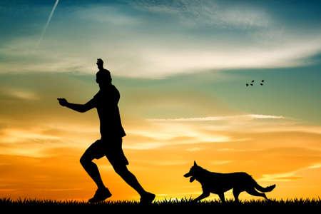 zooth�rapie: chien dress� au coucher du soleil Banque d'images