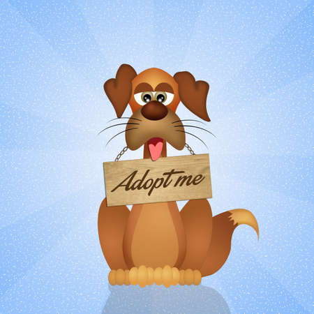 pet therapy: adopt a dog Stock Photo