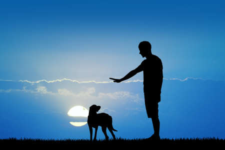 trained: dog trained at sunset