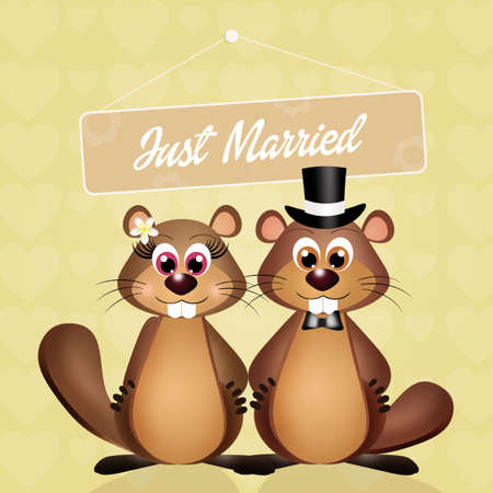 animal den: Wedding of marmots