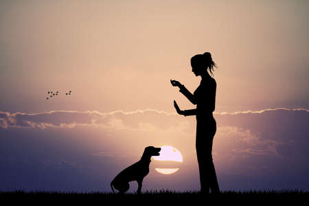 rescue dog: woman trains dog at sunset