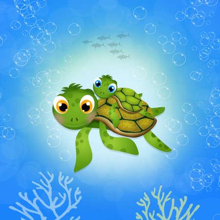 sea turtle: little sea turtle