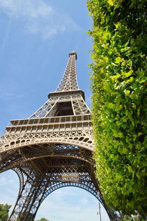 tour eiffel: Tour Eiffel, Paris