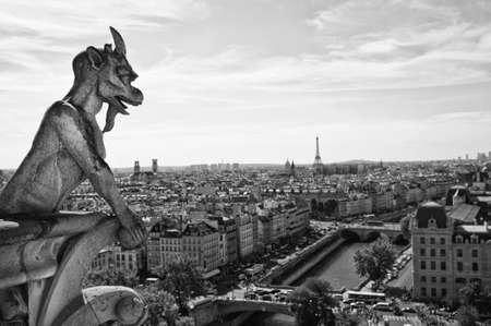 gargouille: Notre-Dame Gargouille