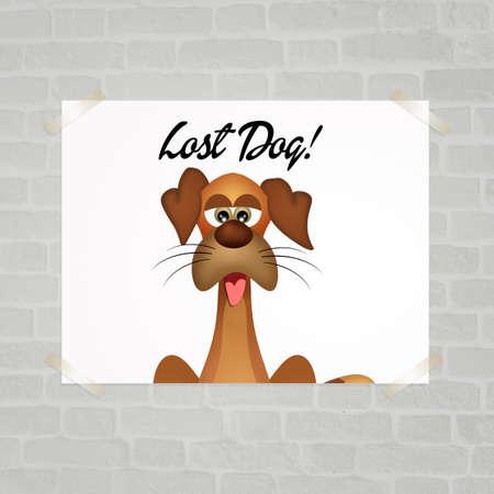 lost: lost dog