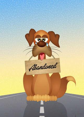 abandoned: dog abandoned Stock Photo
