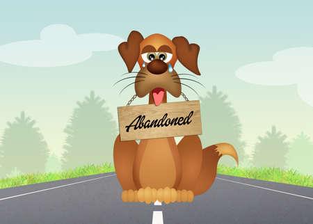 perros graciosos: perro abandonado