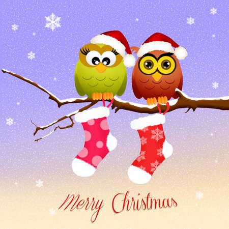 christmas socks: owls with Christmas socks