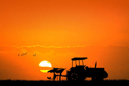 hayfield: tractor in the fields at sunset
