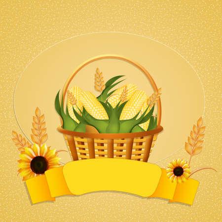 sweet corn: sweet corn Stock Photo