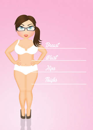 ladies bust: Measurements of women