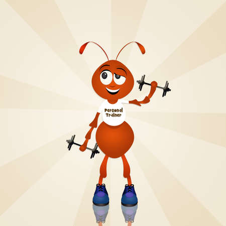 personal trainer: personal trainer ant