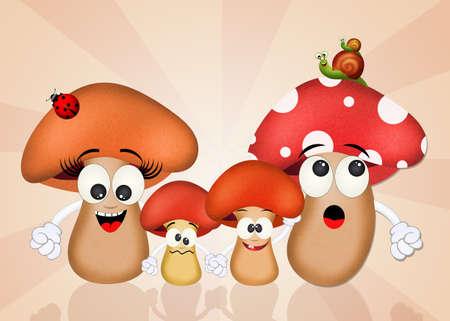 porcine: family of mushrooms