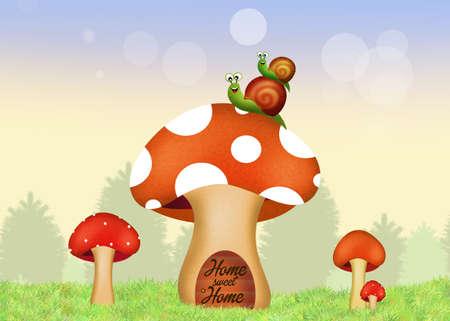 porcine: fungus home