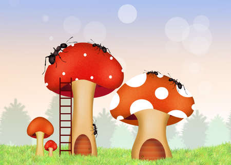 porcine: ants on mushrooms Stock Photo