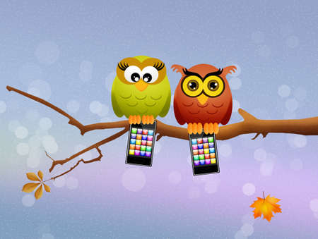 call of nature: owls with cellular Stock Photo
