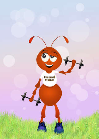 personal trainer: ant personal trainer