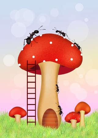 porcine: ants on mushroom