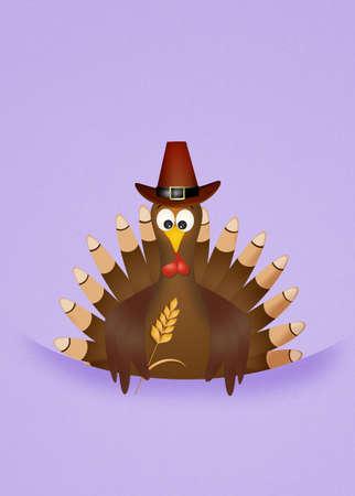 funny turkey: funny turkey