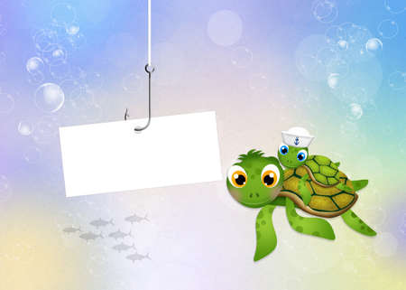 carefree: funny sea turtle