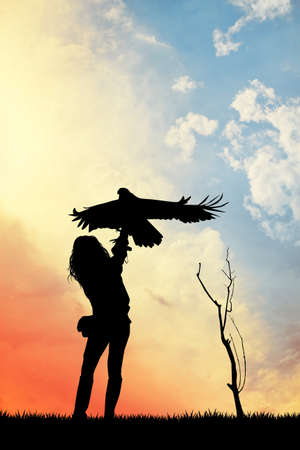 falconer silhouette at sunset