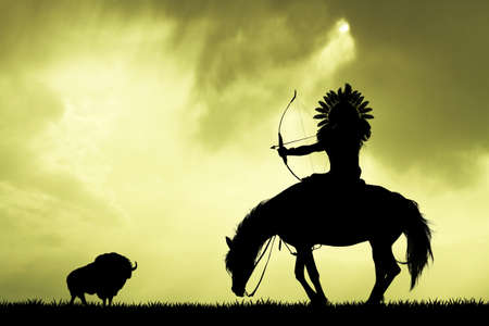 indian buffalo: Indian hunting buffalo at sunset Stock Photo