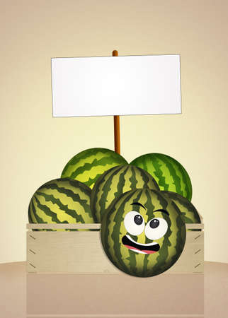 greengrocer: funny watermelon