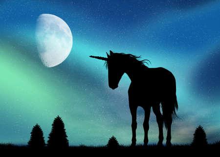 northern lights: unicorn and Northern Lights