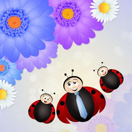 ladybug: father ladybug on flowers